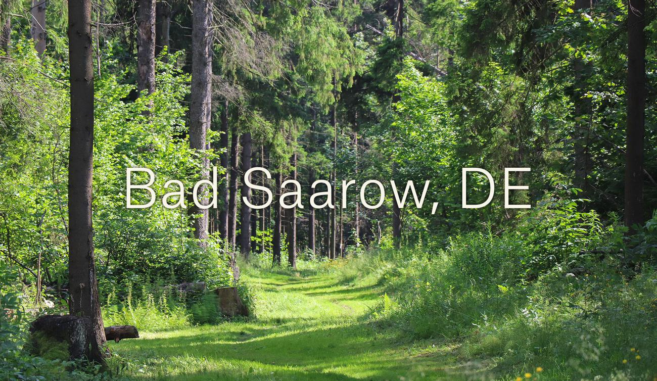 Bad Saarow (DE)
