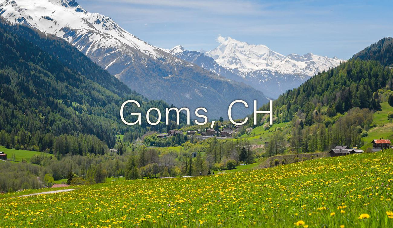 Goms (CH)